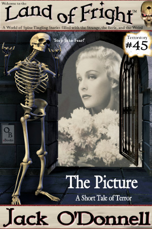 Land of Fright Terrorstory #45: The Picture
